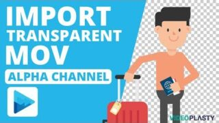 VEGAS Pro Tutorial – How To Import Video with Transparent Background [Enable Alpha Channel]